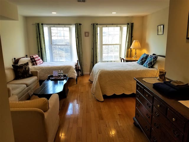 Huge 2-4 Guest Room in a Gorgeous Fishtown Home