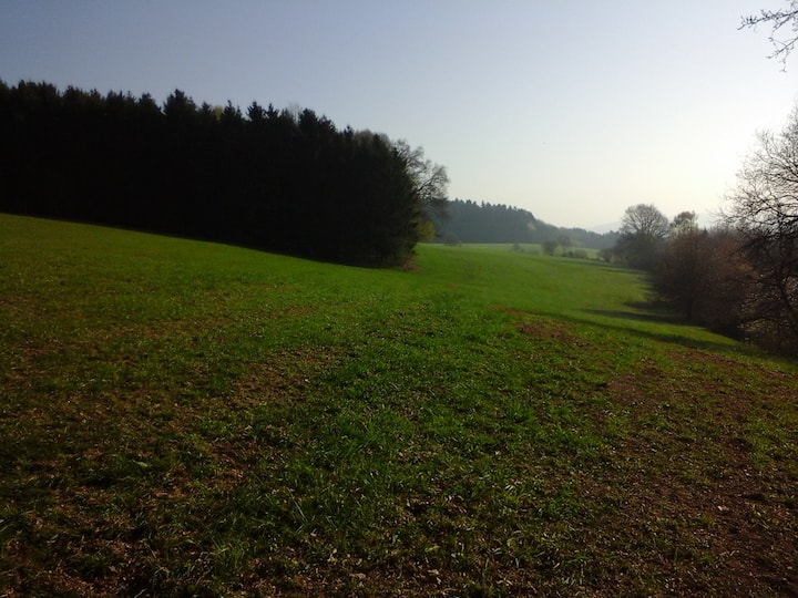 Ferien im Westerwald, gerne auch mit Hund!