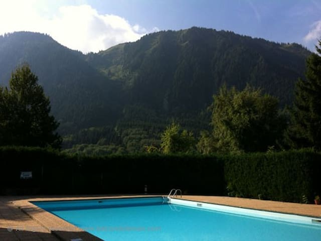 Comfortable apartment in mountains and near lake. - Thollon-les-Mémises