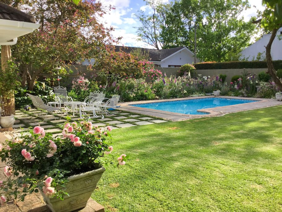 Tranquil garden and pool