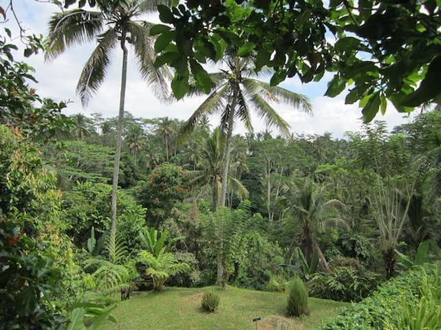 organic jungle villa near ubud - Tegallalang - 公寓