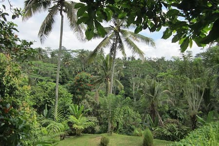 organic jungle villa near ubud - Tegallalang - Byt