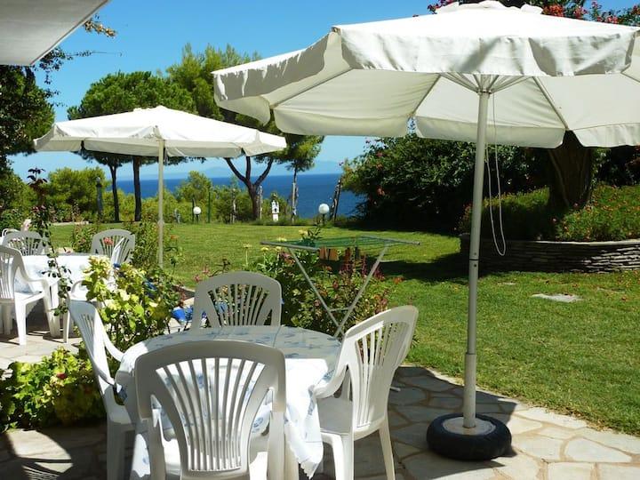 Villa Oasis apartment with garden