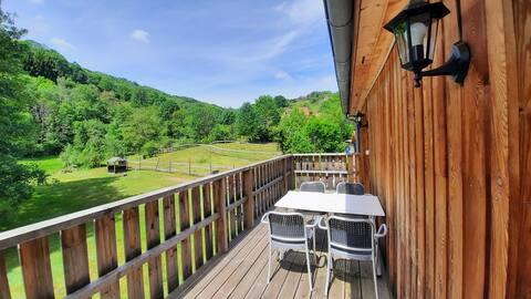 Spacieux logement avec terrasse en Alsace
