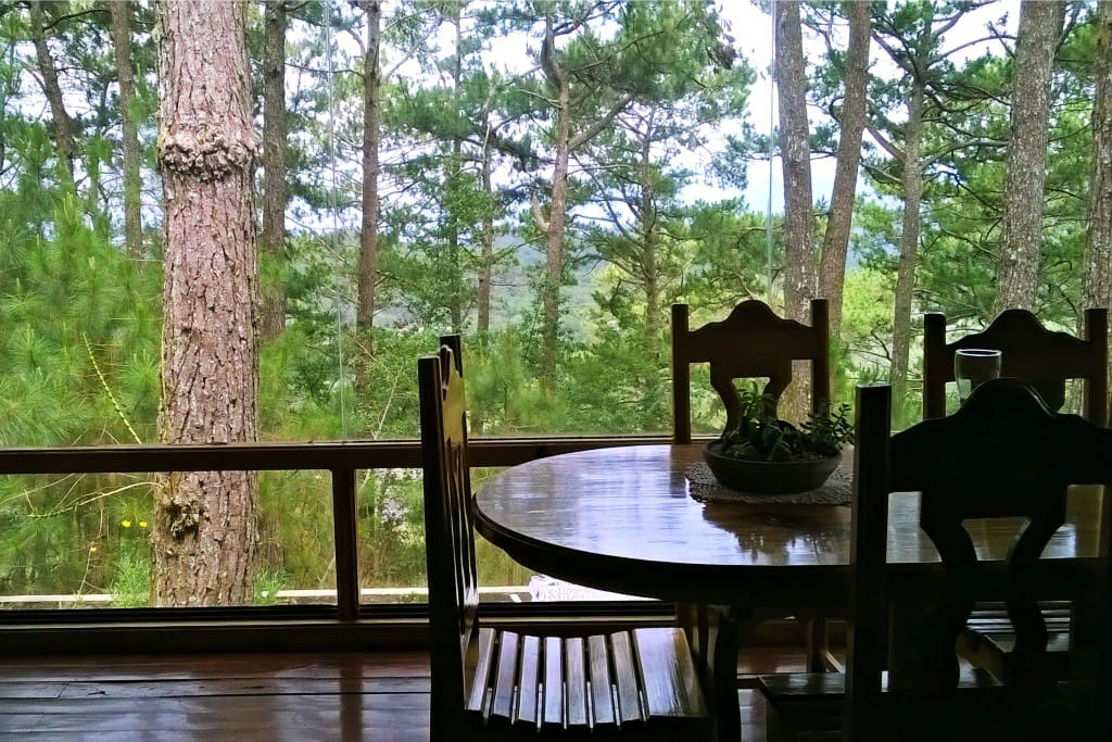 Bringing the outdoors into the dining space