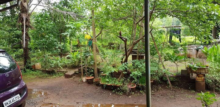 CHINTAMANI. MY HOME