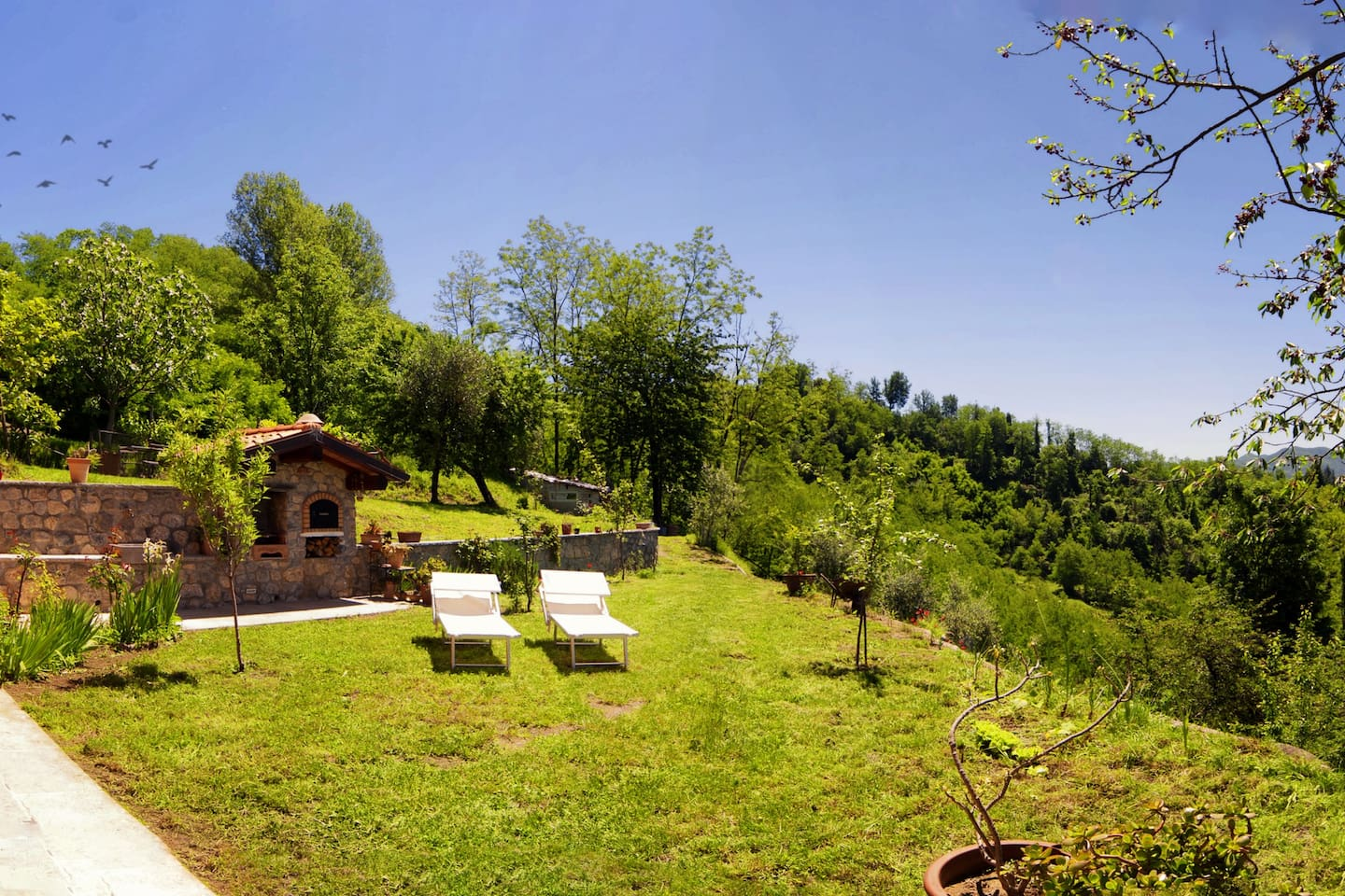 Wood oven, bbq and garden
