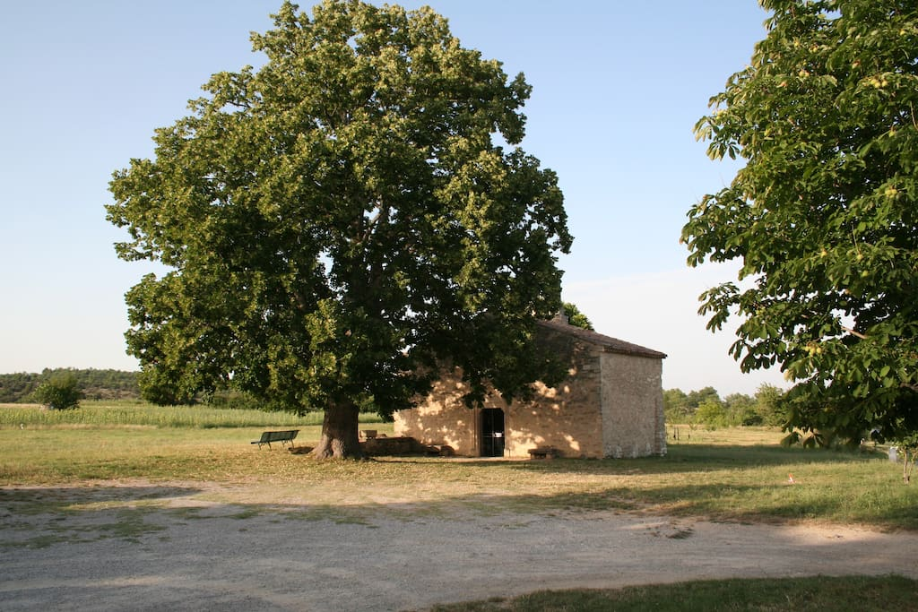 La Chapelle du Hameau de Saint-Pierre et le Tilleul