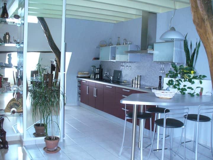 Duplex avec terrasse au CV