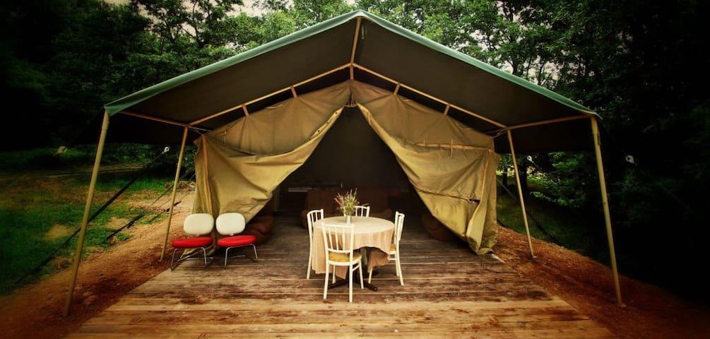 Luxe safari tent in sunny Slovakia