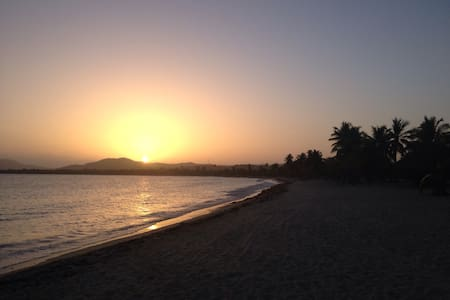 Plan For a Miracle - Vieques