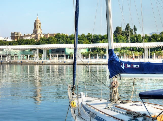 THE ENVIRONMENT. THE MARINA AND THE CATHEDRAL