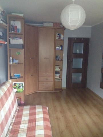 Comfortable, spacious room in a cozy flat - Poznaň