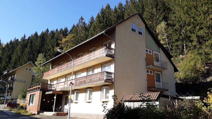 Sunny 1 bedroom apartment sleeps 2+1 with balcony
