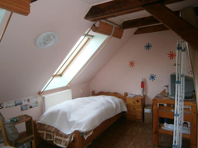 Kedves szoba csendes kertes házban - Pécs - Lainnya