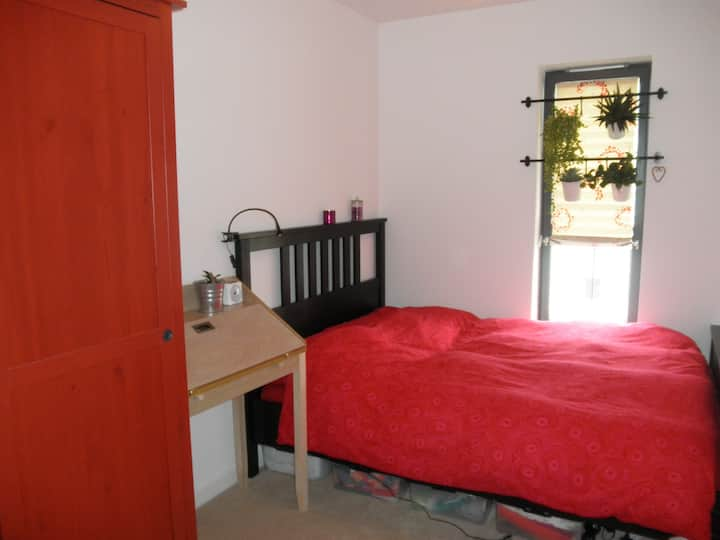 double room in a sunny appartment