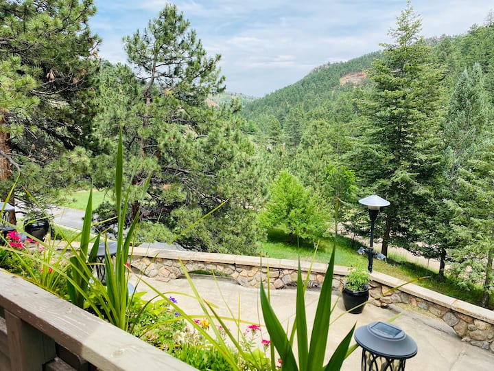 PERFECT GETAWAY, MOUNTAIN RETREAT WITHIN TOWN!!