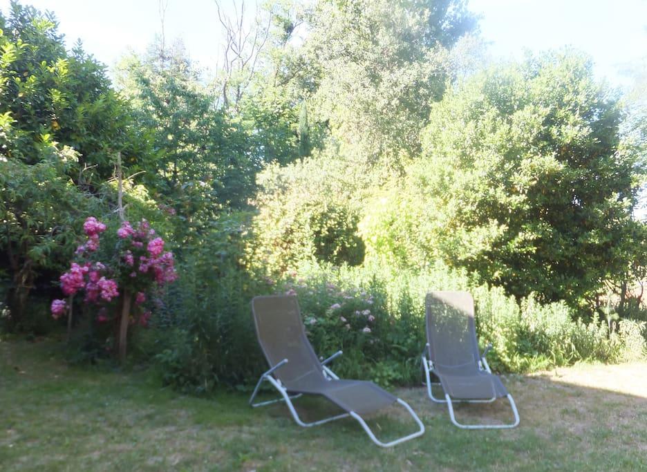 grand jardin avec divers endroits pour la détente. vue sur la rivière.