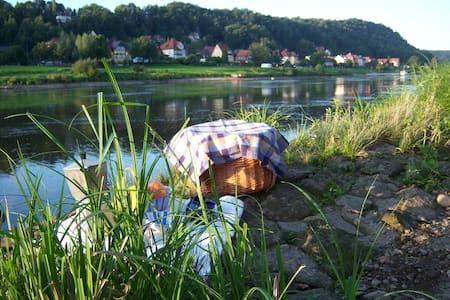 FW 1 im Denkmal an der Elbe - Stadt Wehlen