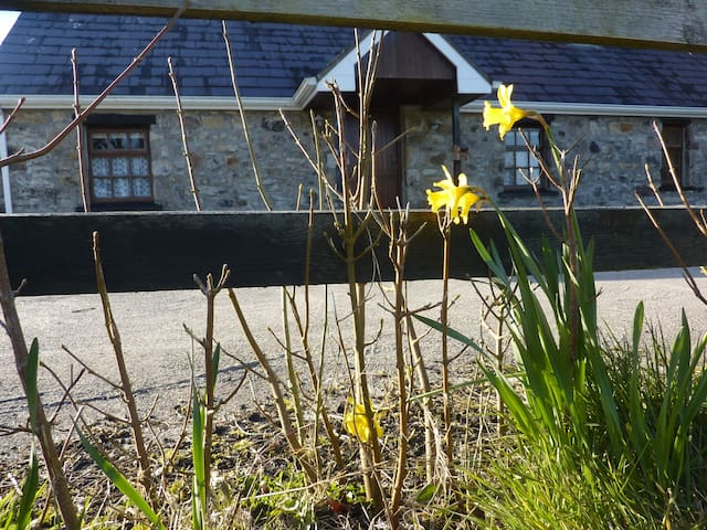 The Hill Cottage - Loughrea - 一軒家