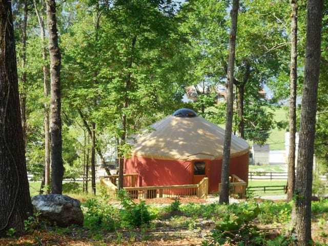 Magical Mountaintop Yurt - Resort - Talladega - Iurta