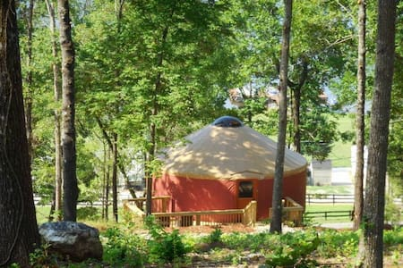 Magical Mountaintop Yurt - Resort - Talladega