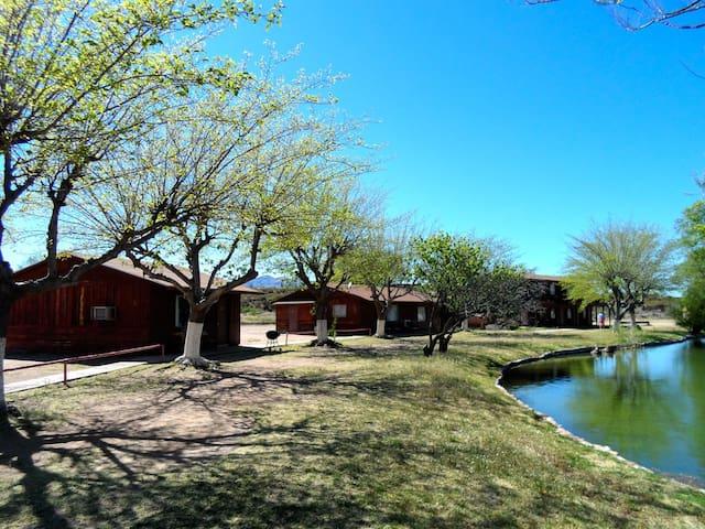 Roomy Kitchenette Cabin Pond View, Roosevelt, AZ - Roosevelt