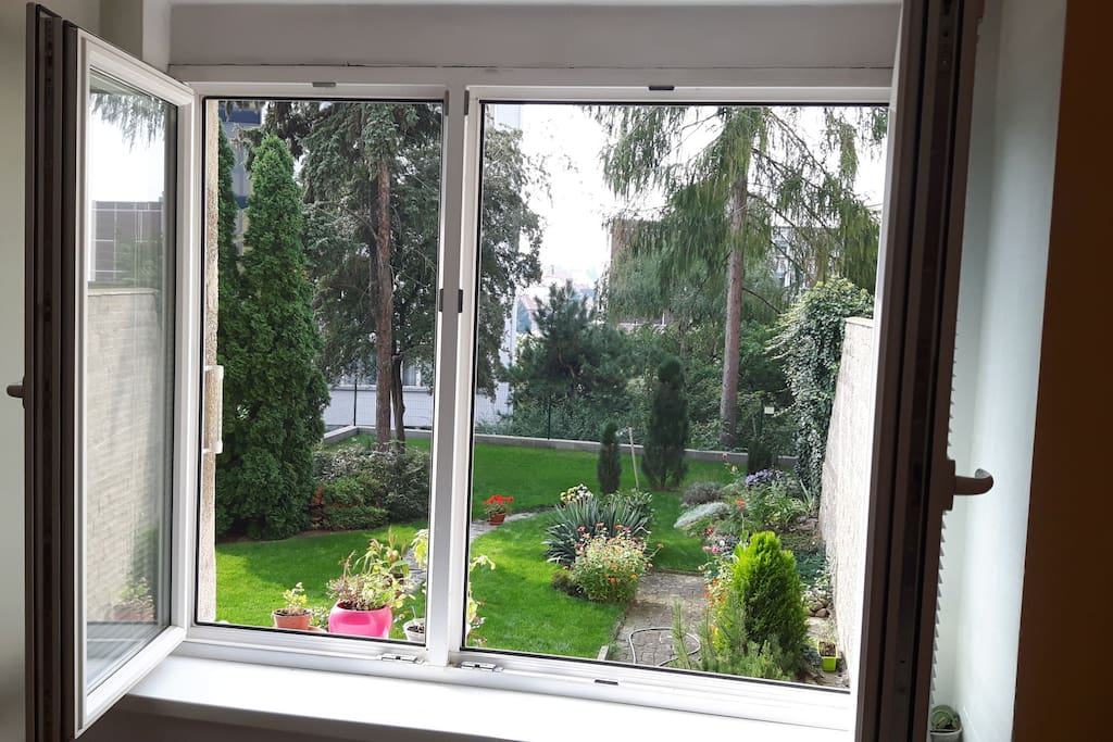 A view from the other room to our beautiful private garden