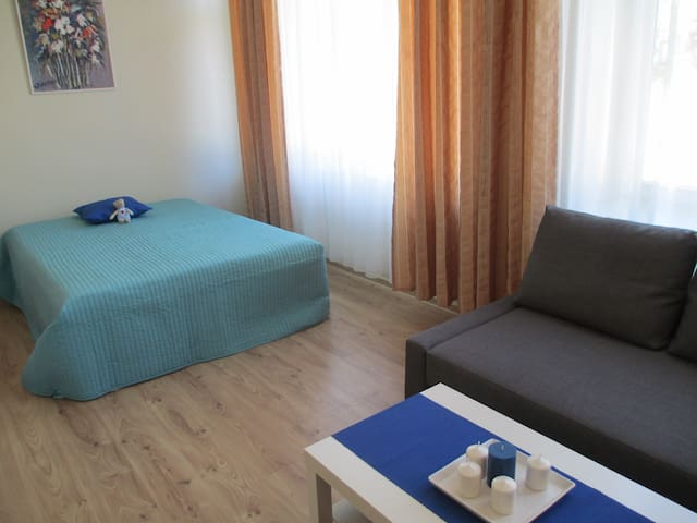 Apartment in the heart of Nida - Nida - Appartement