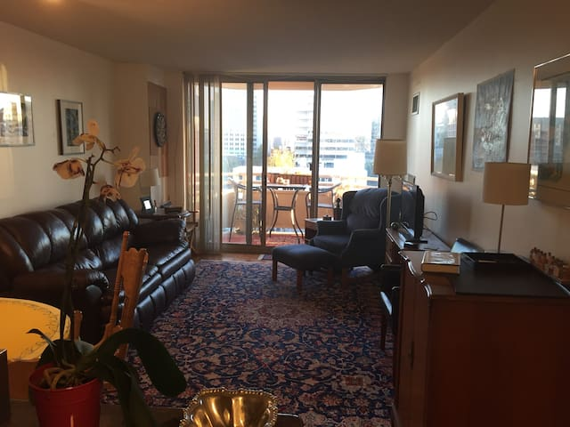Downtown Bethesda Luxury Nest - Bethesda - Condominium