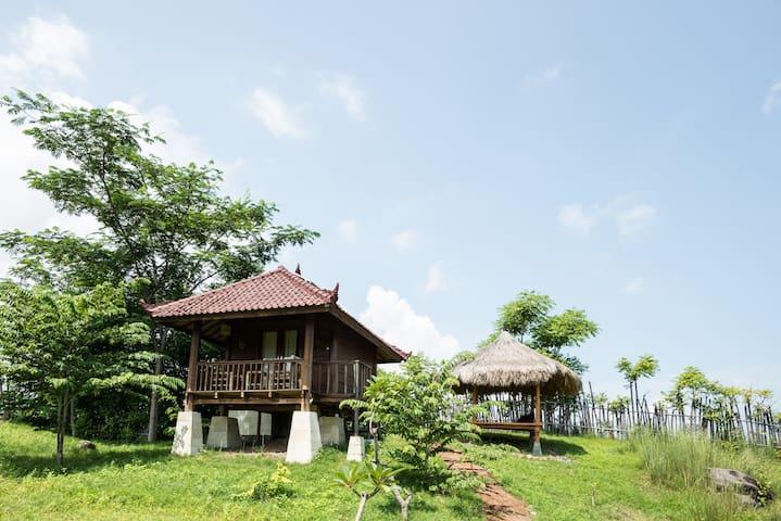 Bungalow Atias ❤ Saifana Organic Farm