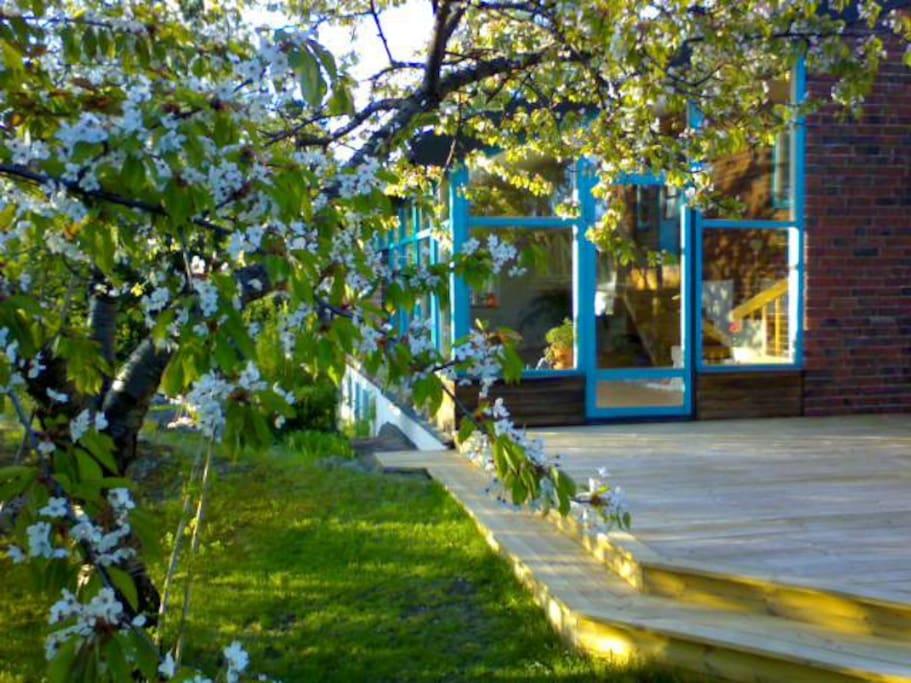 Nice & sunny verandah.