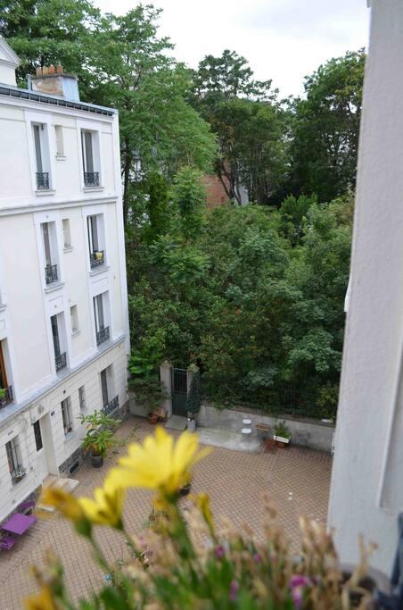le jardin par ma fenêtre..gazouillis d'oiseaux assurés!