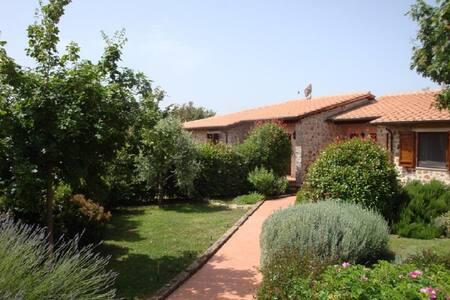 Casale di campagna plurifamiliare - Montemerano