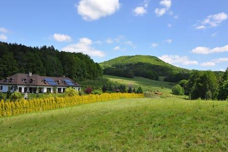 Ferien Haus Böhmische Schweiz - Decin - 独立屋