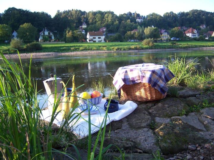 FW 2 im Denkmal an der Elbe