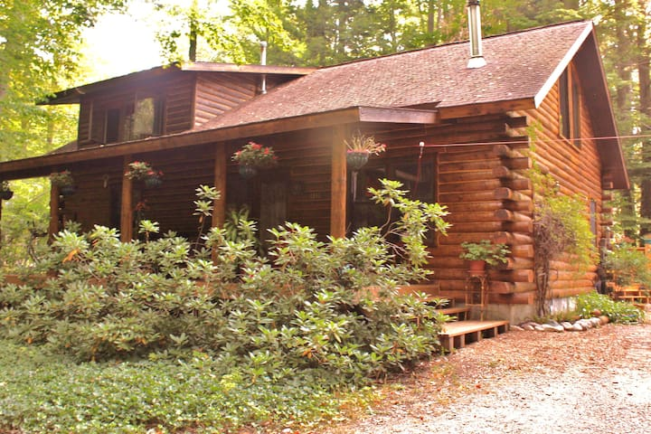 Your Own Room in a Charming Cabin! - Interlochen - Huis