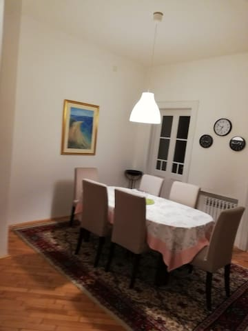 Large charming apartment in the center of Sarajevo