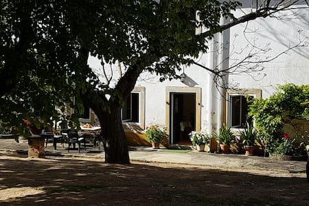 Quinta da Bizelga Cottages ❤ Children ❤ - #1 of 4