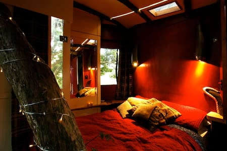 Treehouse in totara heaven. - Wellsford - Cabana en un arbre