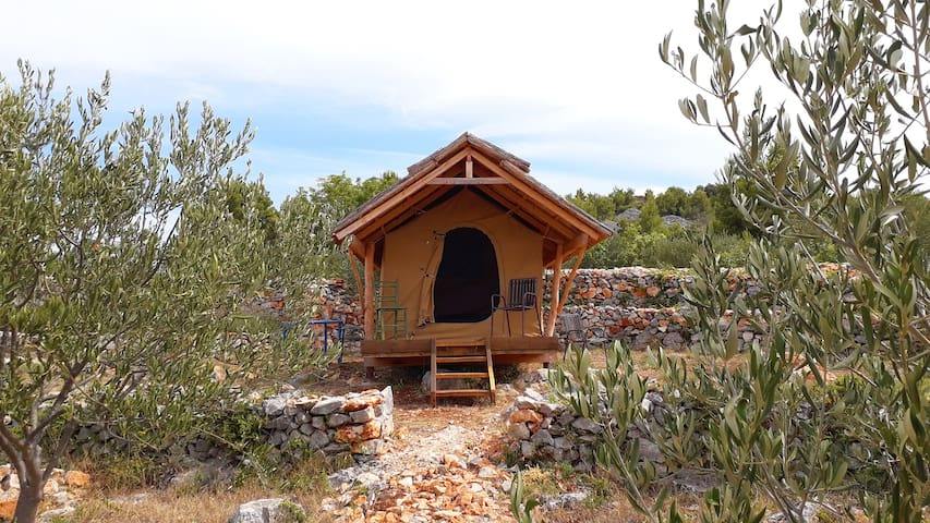 """Glamping hut """"Mokos"""" in olive grove with sea views"""