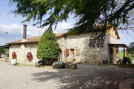 **Toscana FarmHouse in Naturalinda *** - Colle di Val d'Elsa - Lejlighed