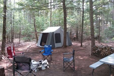 Take Me Tenting (Overlook Site)