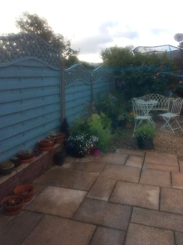 Garden - a real sun trap when the sun actually shines!
