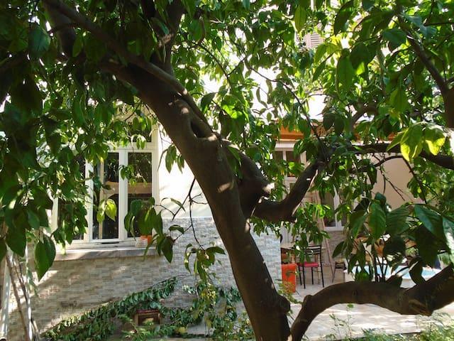 GARDEN VIEW, in the center of İZMİR