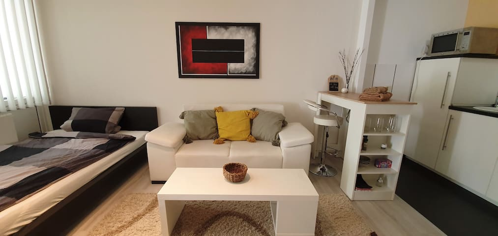 Pretty studio apartment with balcony renovated