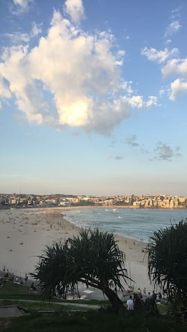 Wake up to the Famous Bondi Beach - Bondi Beach - Hus