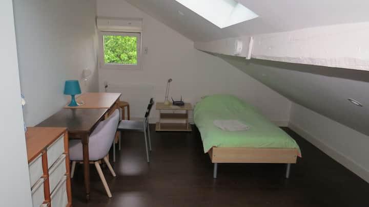 Chambre sous les toits avec SDB