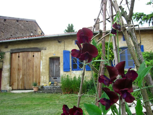 An old mill house in rural France - Grand-Failly - Talo