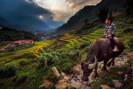 Zizi Homestay & trekking Sapa